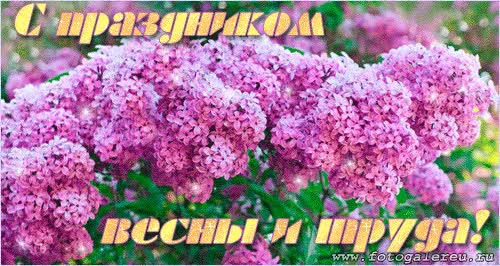 Watch and share Открытки С Праздником Весны И Труда 1 Мая | GIFs on Gfycat