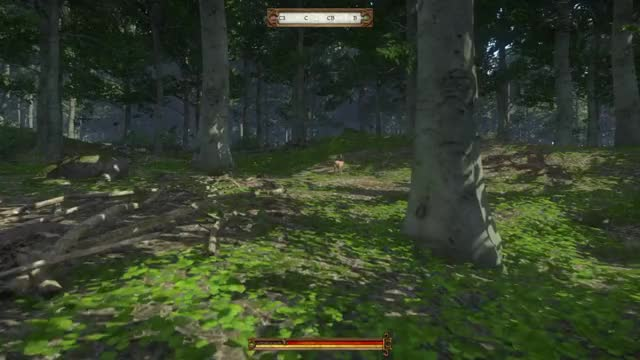 Watch Kingdom Come Deliverance 7 GIF by @shaun_collins on Gfycat. Discover more related GIFs on Gfycat