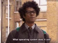 it crowd, funny