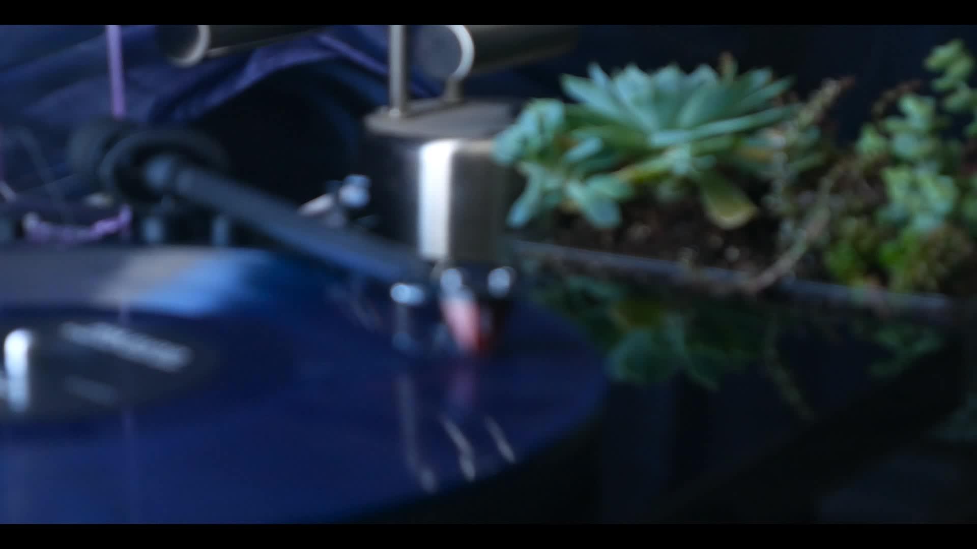 audiophile,  GIFs