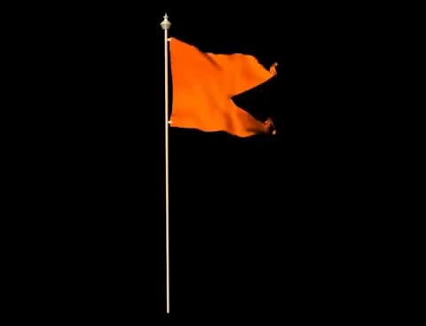Watch and share Saffron Flag GIFs on Gfycat