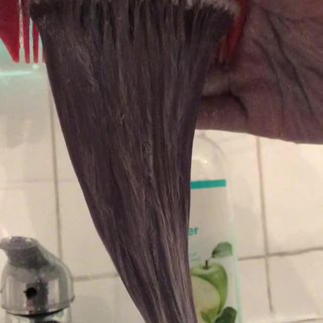 Watch Hair Dying - Oddlysatisfying GIF on Gfycat. Discover more hair dye, oddlysatisfying, satisfying GIFs on Gfycat