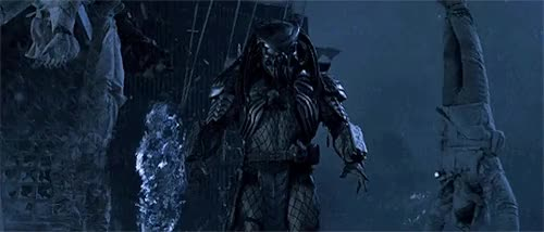 Watch this alien vs predator GIF on Gfycat. Discover more alien vs predator, predator, the predator GIFs on Gfycat