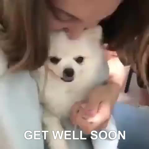 Watch and share Get Well Soon GIFs by Ricky Bobby on Gfycat