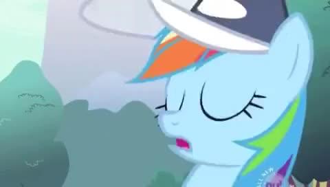 Watch Rainbow Dash GIF on Gfycat. Discover more Rainbow Dash, mlp GIFs on Gfycat