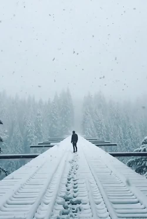 Watch and share Vance Creek Bridge By Lennart Pagel GIFs on Gfycat