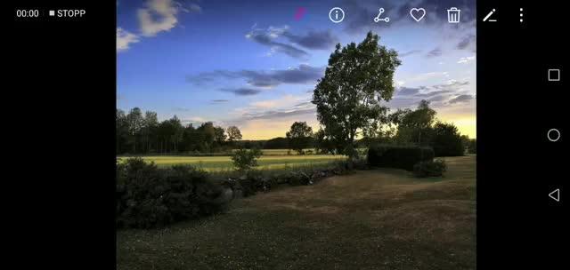 Watch and share Honor 10, Ai Camera GIFs by paljoakim on Gfycat