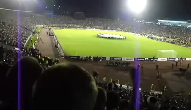 Watch and share Partizan GIFs on Gfycat