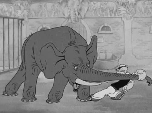 animals, elephant, zoo, Strength - Flings elephant GIFs