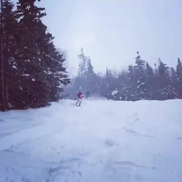 Watch and share Skiing GIFs by iguy243 on Gfycat