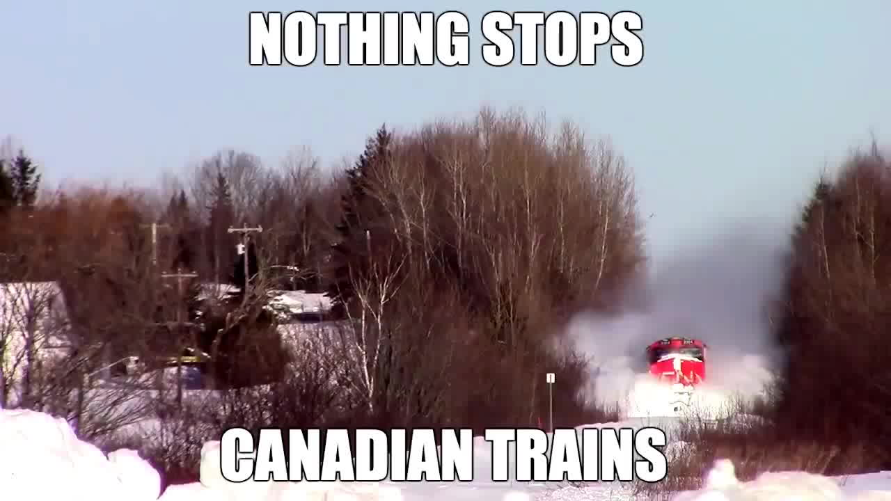 nothing stops canadian trains, trains, trains in canada, Nothing Stops Canadian Trains - Trains In Canada GIFs