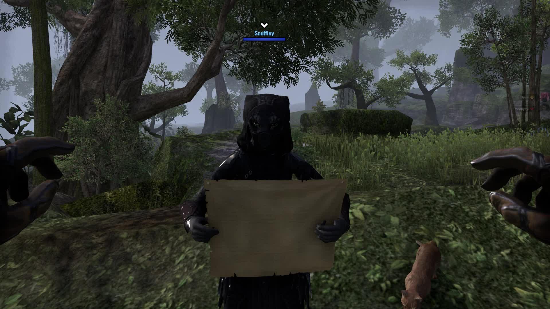 elderscrollsonline, Elder Scrolls Online 2018.05.27 - 14.44.41.08 GIFs