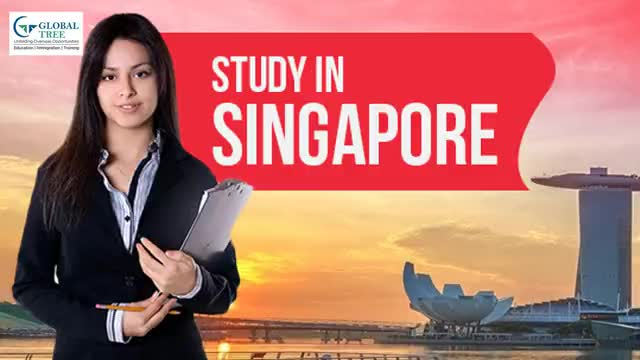 Watch and share Study In Singapore GIFs by Study Abroad & Immigration on Gfycat