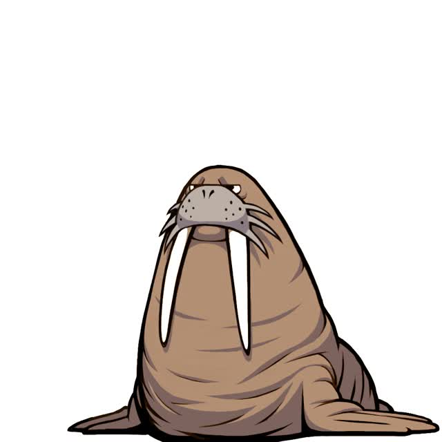 Watch and share Walrus GIFs on Gfycat
