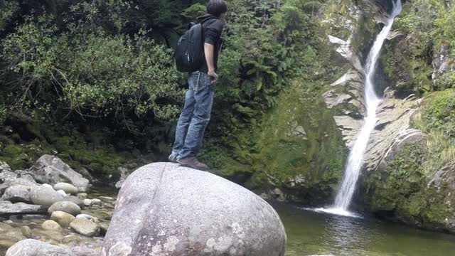 Watch and share Newzealand GIFs on Gfycat