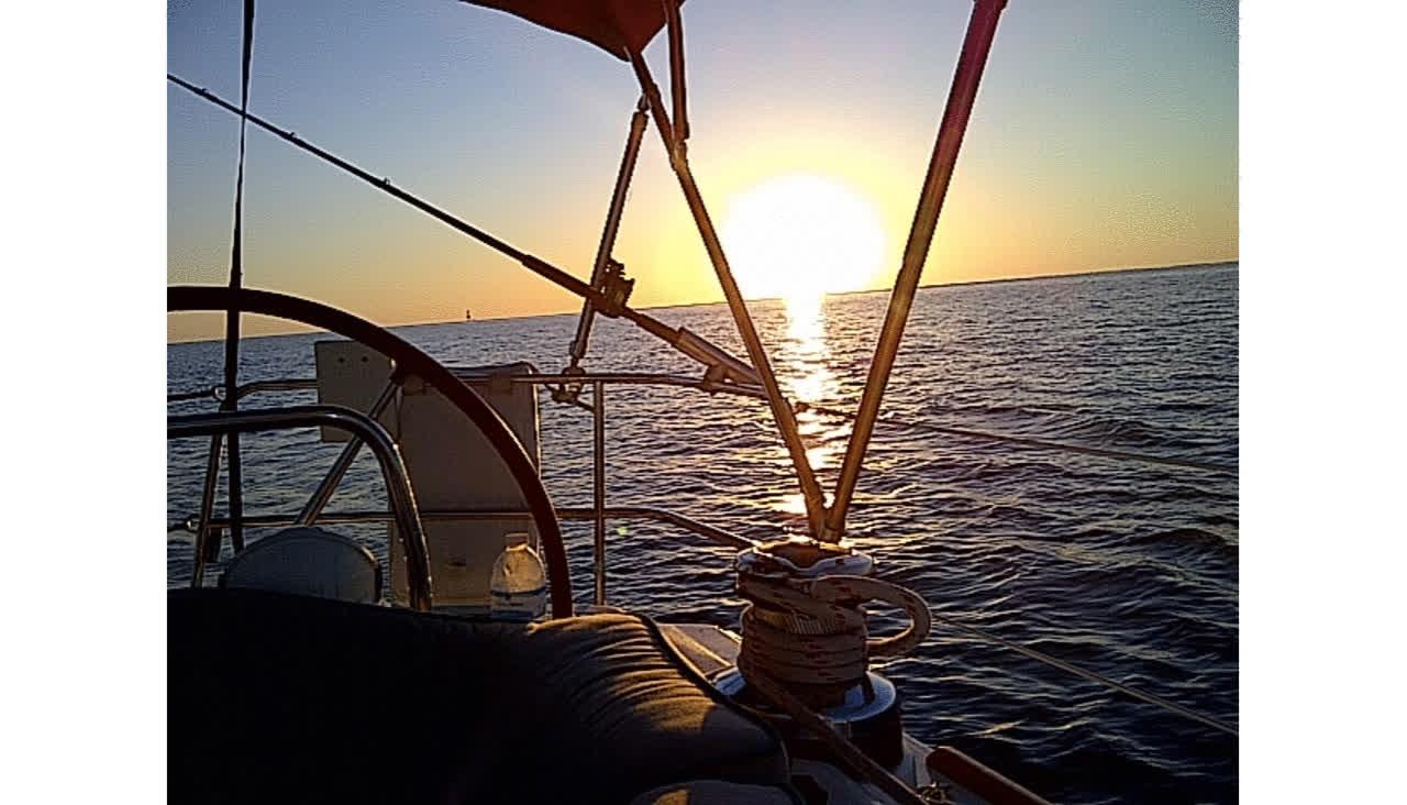 sailventuresinc GIFs