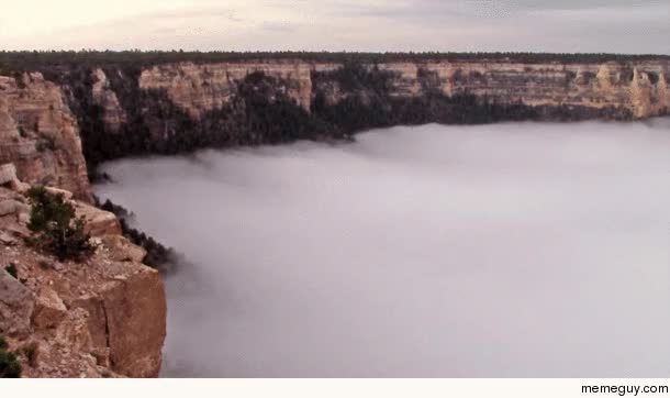 Watch Rare fog inversion in the Grand Canyon GIF on Gfycat. Discover more related GIFs on Gfycat