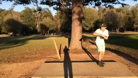 discgolf, Face On GIFs