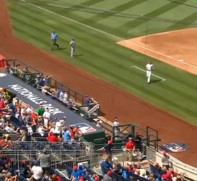Watch and share Dodgers Fan Dropped Pop Up GIFs by efitz11 on Gfycat