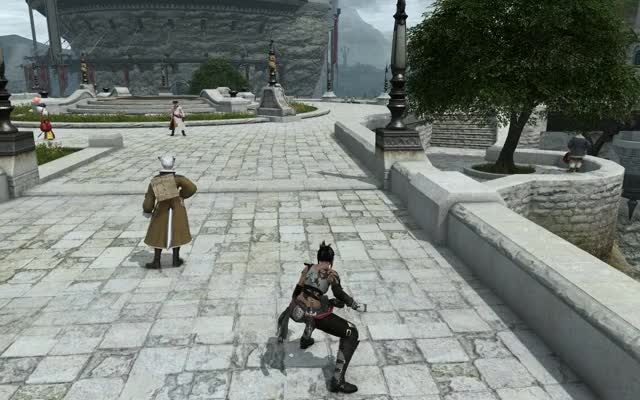 Watch YoshiP's Pro Skater XIV GIF by @r45kxd on Gfycat. Discover more ffxiv GIFs on Gfycat