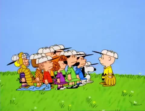 Watch You blockhead! GIF on Gfycat. Discover more baseball, charlie brown, yelling GIFs on Gfycat