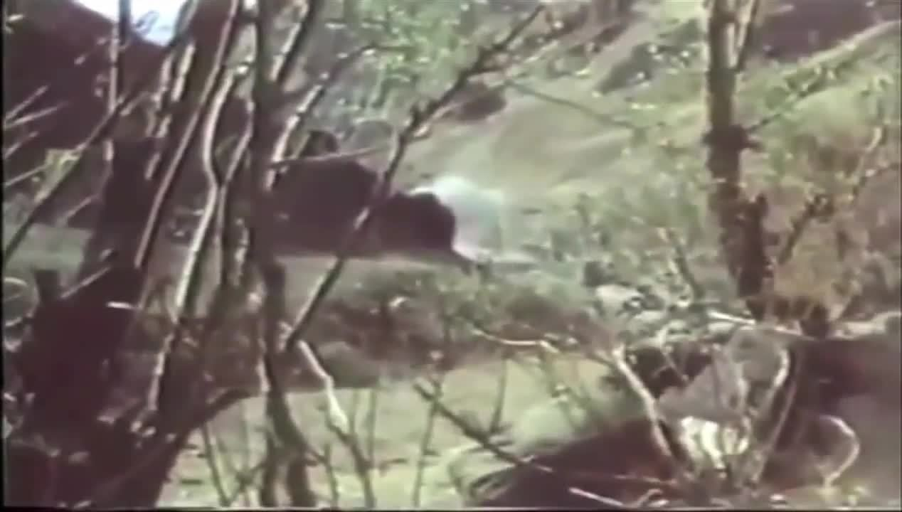 CombatFootage, combatfootage, Soviet soldiers surrender during mujahedin ambush, Soviet-Afghan War GIFs