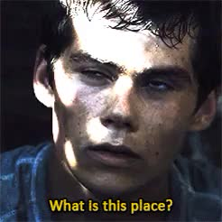 Watch THE MAZE RUNNER GIF on Gfycat. Discover more 1k, 500, aml ameen, dylan o'brien, mine, mine3, the maze runner, this was hard to color, tmralby, tmredit, tmrthomas GIFs on Gfycat