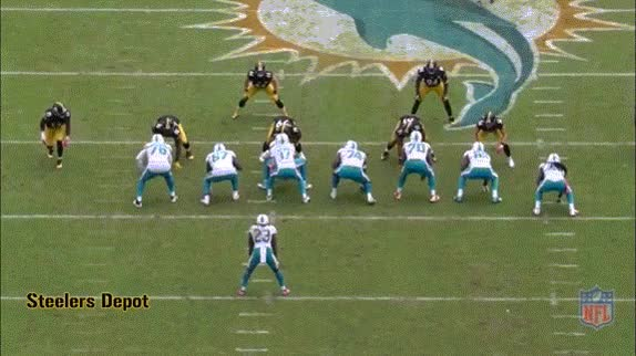 Watch and share Dolphins Steelers GIFs on Gfycat
