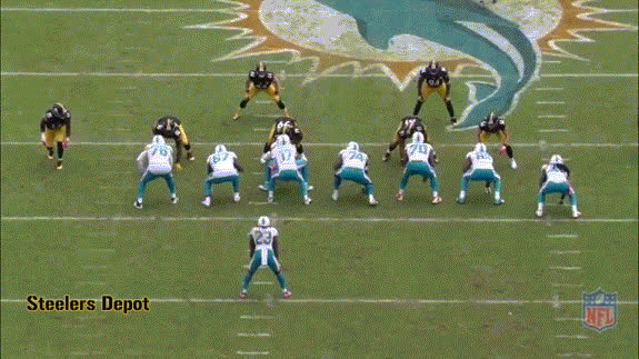 dolphins steelers GIFs
