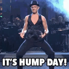 hump day, humpday, joseph gordon levitt, wednesday, Hump Day Wednesday GIFs