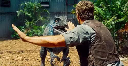Watch and share Jurassic World GIFs and Chris Pratt GIFs on Gfycat
