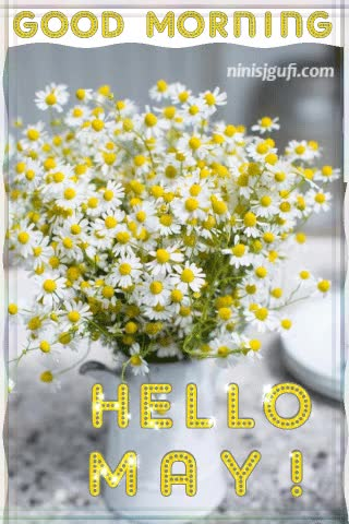 Watch and share Chamomile GIFs and Flowers GIFs by ninisjgufi on Gfycat