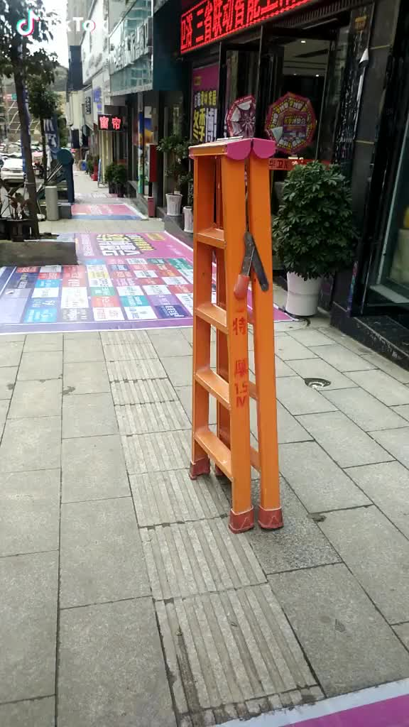 Watch and share A Ladder Walked By Itself GIFs by leathernegotiation on Gfycat
