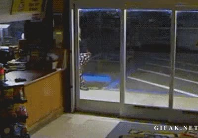 Watch this GIF on Gfycat. Discover more idiotsfightingthings, whatcouldgowrong GIFs on Gfycat