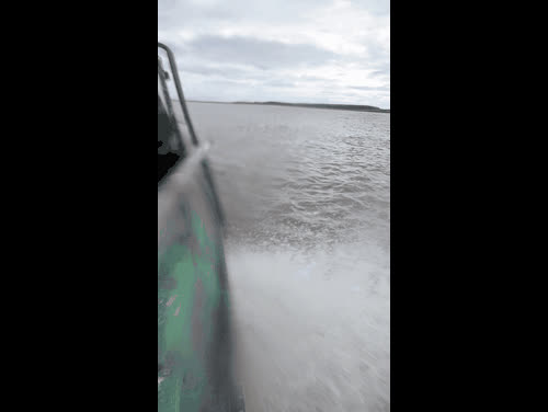 2015, Boat, Fishing, Season, Top, day, ivanbydanov, nature, ship, water, Season Fishing 2015 GIFs