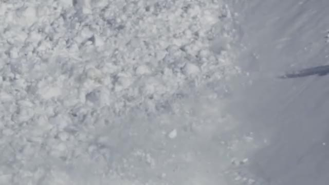 Watch Snowshoe Hare runs on top of an avalanche. GIF on Gfycat. Discover more NatureIsFuckingLit, hare, natureisfuckinglit GIFs on Gfycat