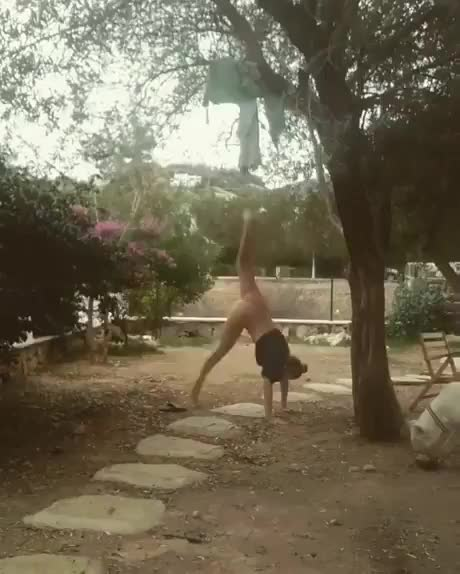 Watch and share Gymnastics Went Wrong GIFs by _p1var_ on Gfycat