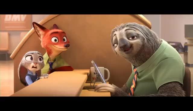Watch Zootopia | DMV (Sneak Peek) GIF on Gfycat. Discover more related GIFs on Gfycat
