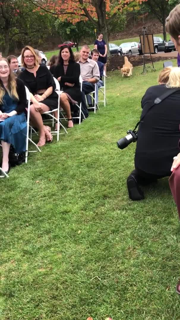The best ring bearer ever GIFs
