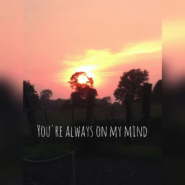 Youre Always On My Mind Love Quote Gif Gif Find Make Share