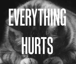 Watch this hurt GIF on Gfycat. Discover more related GIFs on Gfycat