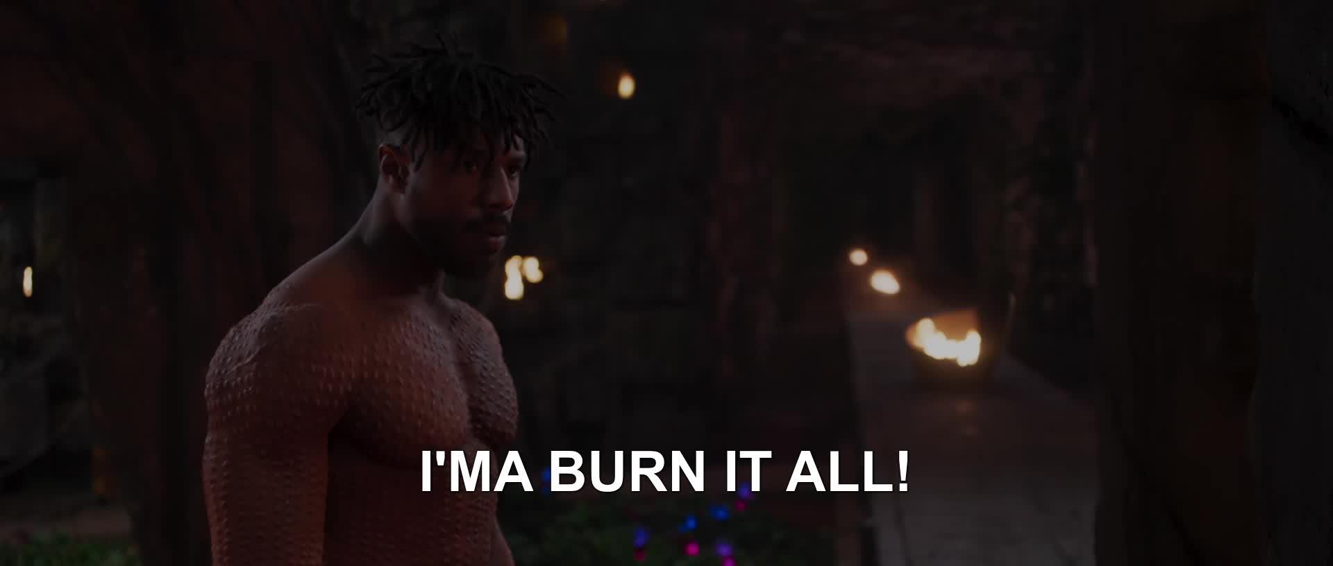 black panther, marvel, mcu, movie, new, Burn it all GIFs
