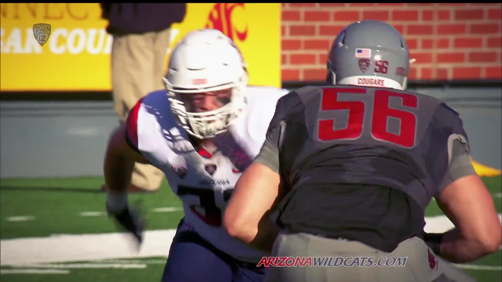 Anu Solomon, Arizona Wildcats Football (American Football Team), Bear Down, Rich Rodriguez (American Football Head Coach), Scooby Wright, The University of Arizona, Wildcats, Scooby being Scooby Arizona-Wash St 2014 GIFs