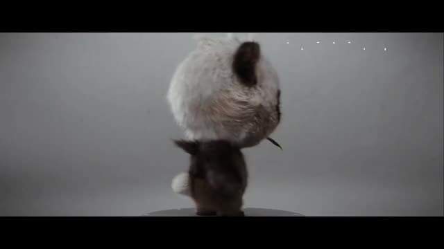 Watch Detective Pikachu - Pancham GIF by Jordan Frost (@frost42) on Gfycat. Discover more Casting, Detective Pikachu, Films, Funny, Gaming, Justice Smith, Movies, Pokemon, Ryan Reynolds, Whitney Houston GIFs on Gfycat