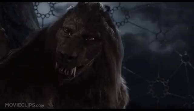 Watch and share Van Helsing GIFs and Werewolf GIFs on Gfycat
