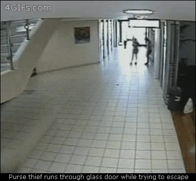 Watch 239D79D7-0F02-4ADE-BBA9-9F6DA4AC3707 GIF on Gfycat. Discover more related GIFs on Gfycat