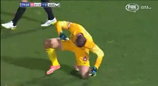 Watch and share Aleague GIFs by falisimoses on Gfycat