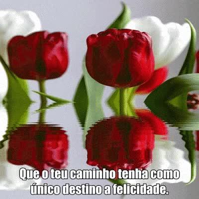 Watch and share Que O Teu Caminho  Tenha Como Único  Destino A Felicidade. GIFs on Gfycat