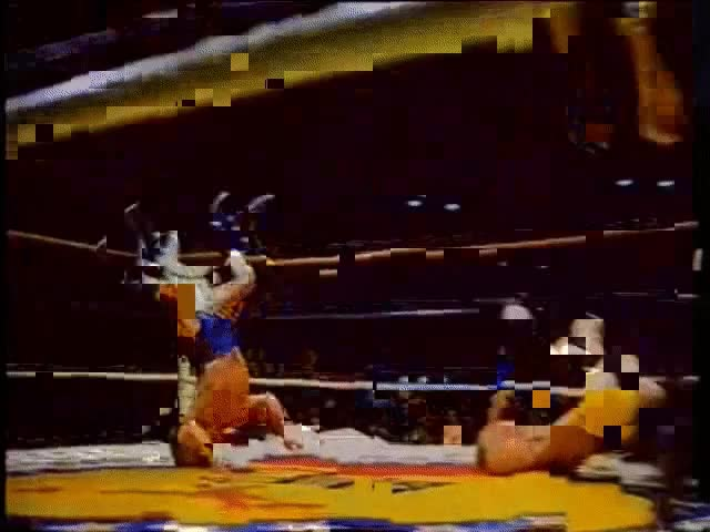Watch and share Midget Wrestling GIFs on Gfycat