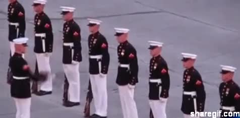 Watch and share Funny Army Fail Gifs 12 GIFs on Gfycat